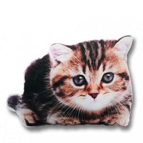 Almofada-Gato