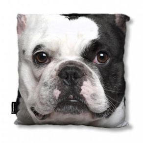 Almofada-Bulldog-Frances-Pelucia