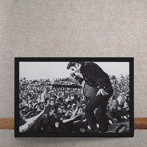 Elvis-Palco-Assediado-tecido