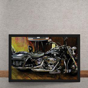 Moto-Custom-Jack-Daniels-tecido