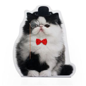 Trava-porta-gato-pomposo-20326