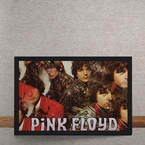 BN028-Pink-Floyd-tecido