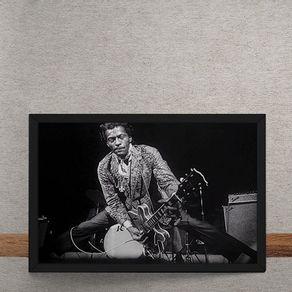 Chuck-Berry-tecido